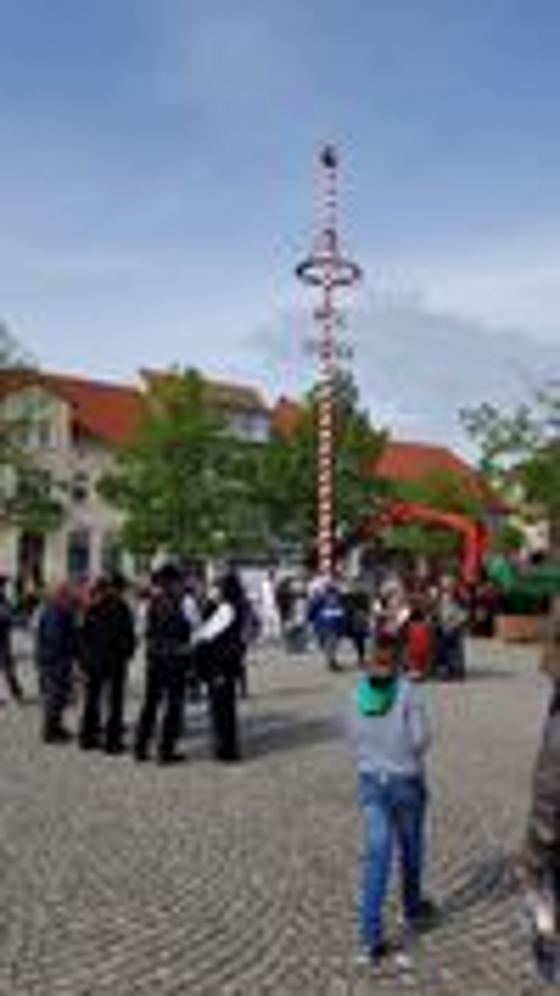 Der Maibaum in Jüterbog auf dem Marktplatz steht